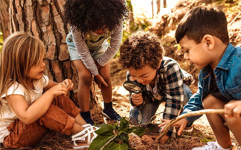 Kinder erkunden die Natur